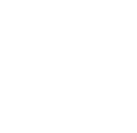 recruitin-standaard-2